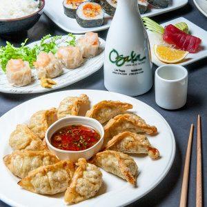 OSAKA Dinner 13
